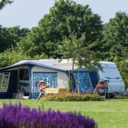Voordelige campings